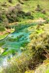 The waikato River